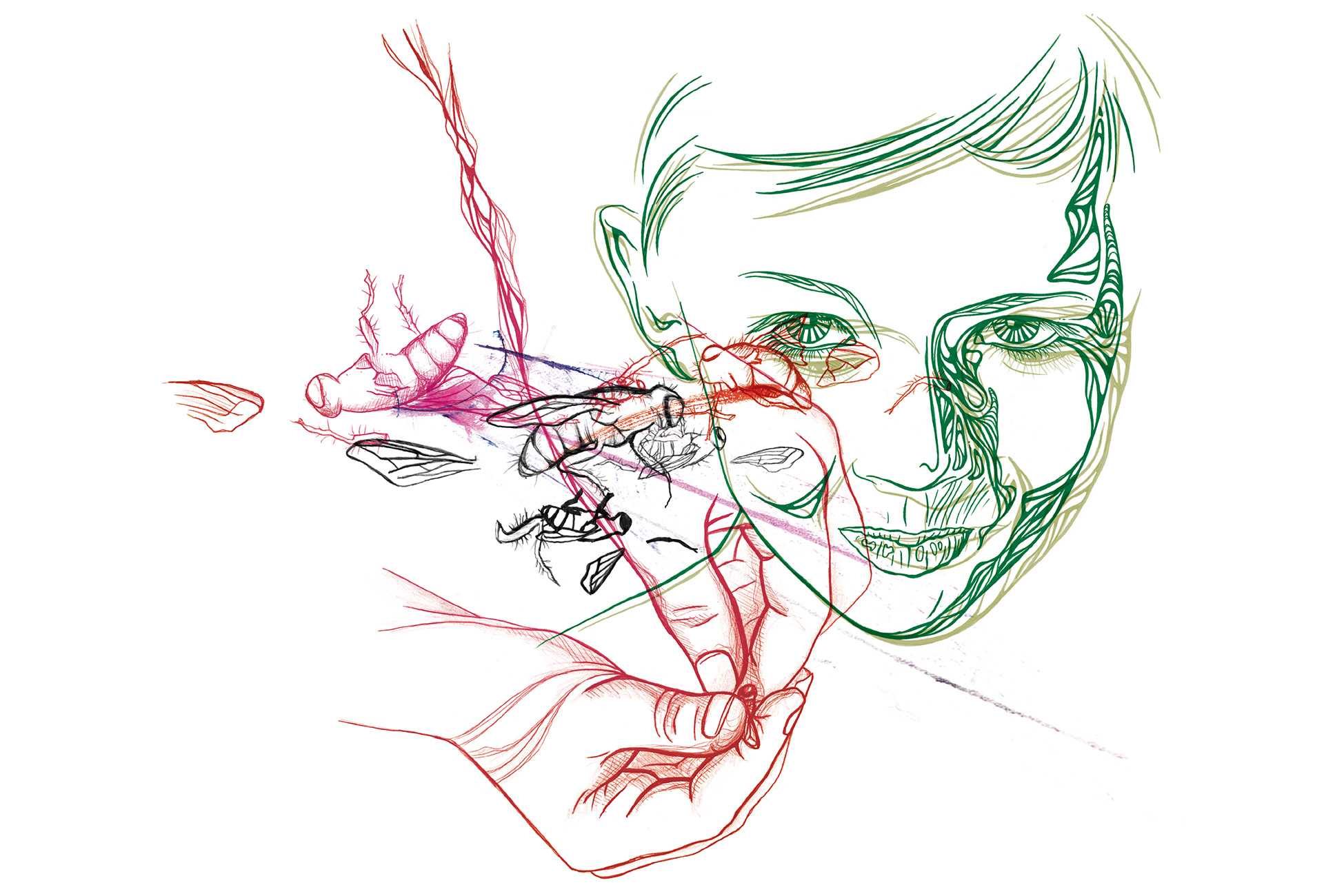 illustration_susanngreuel_10