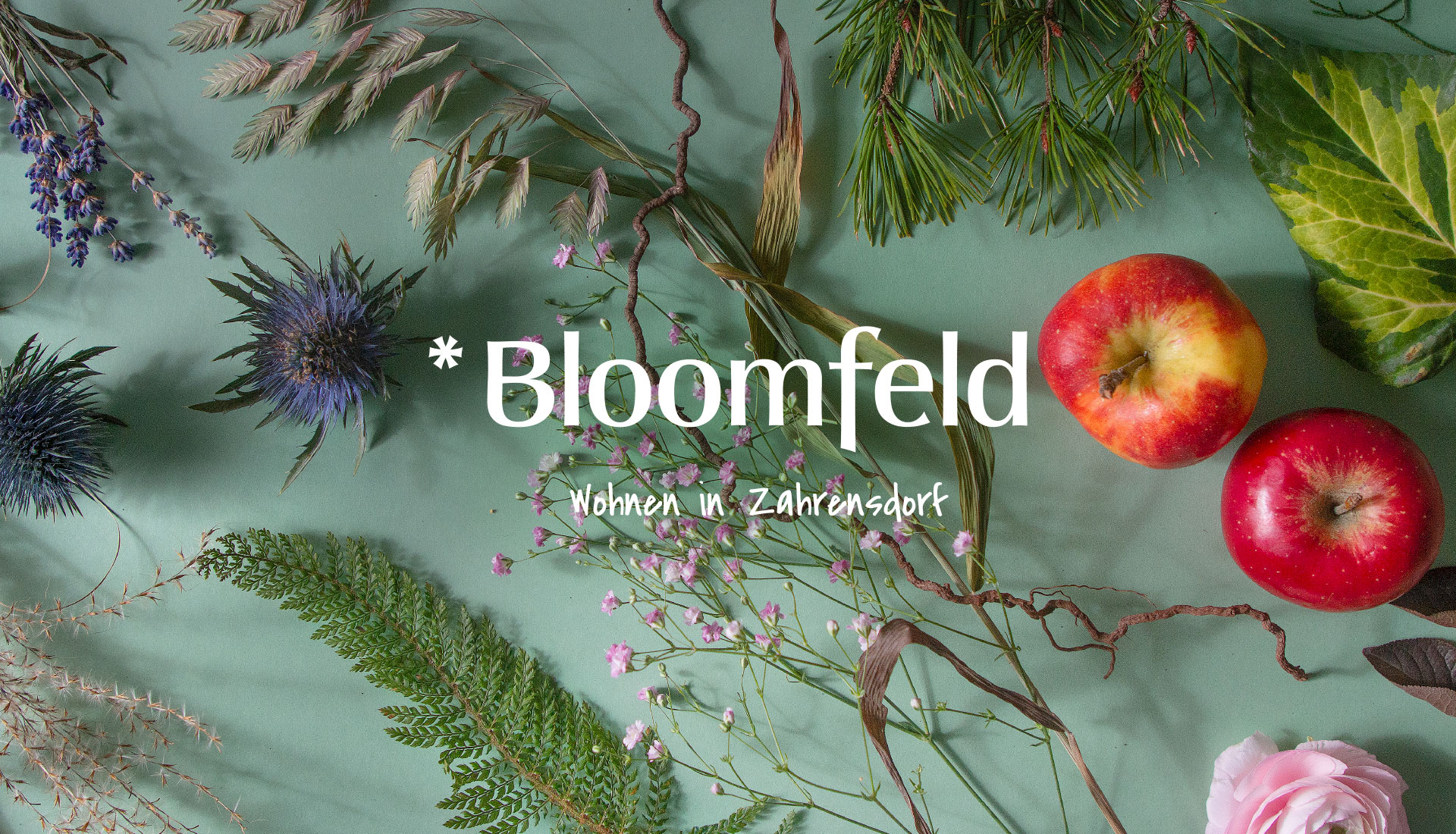 susanngreuel-bloomfeld-markendesign-keyvisual